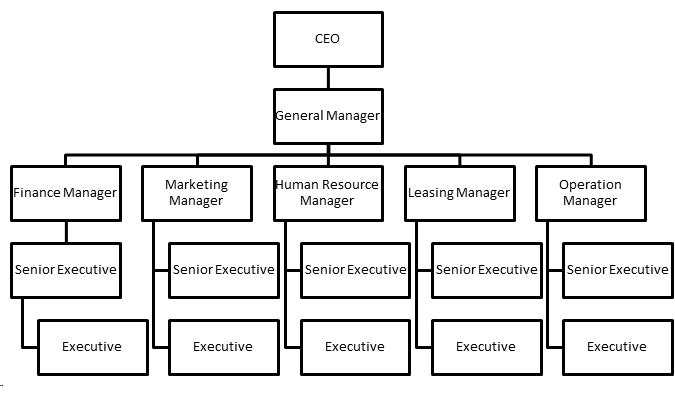 example of capital structure of a company