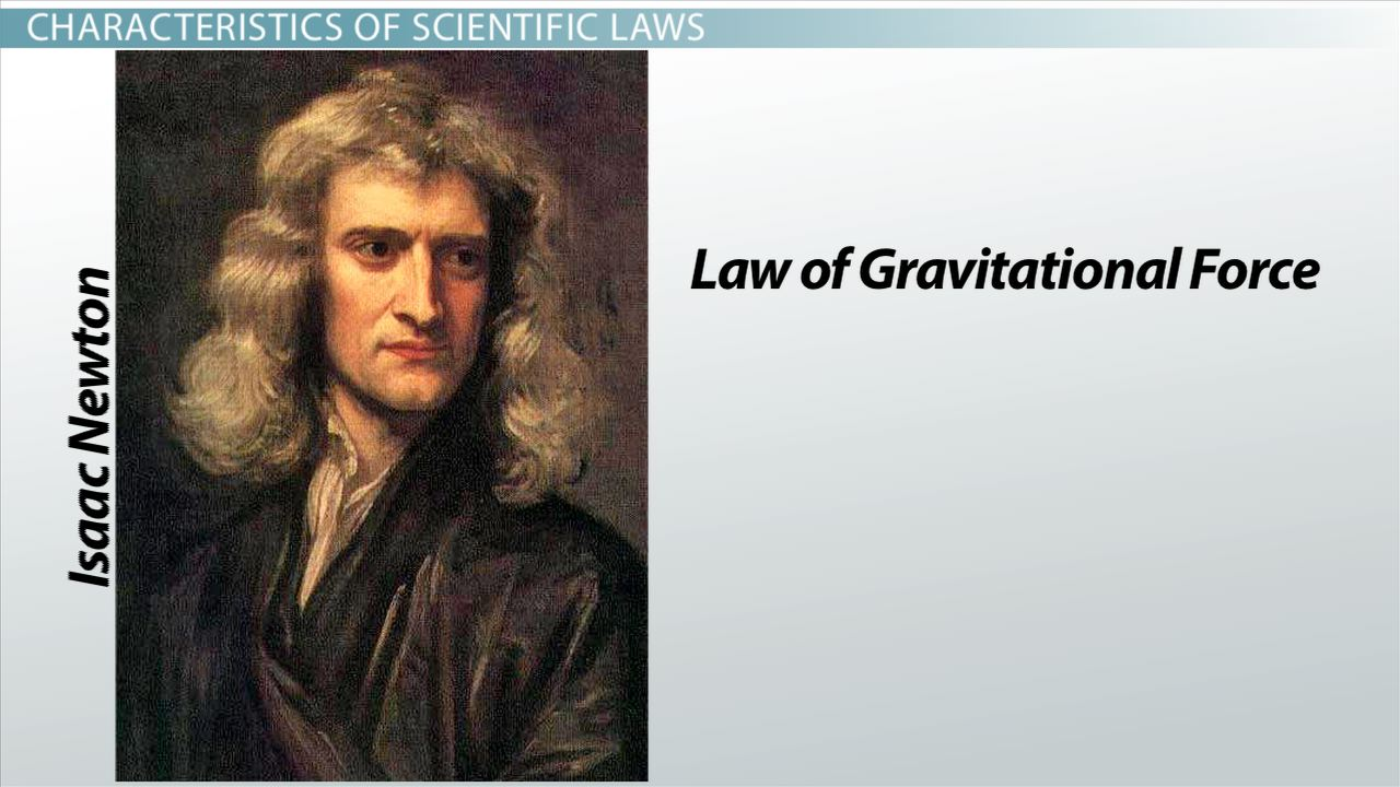 case law definition and example