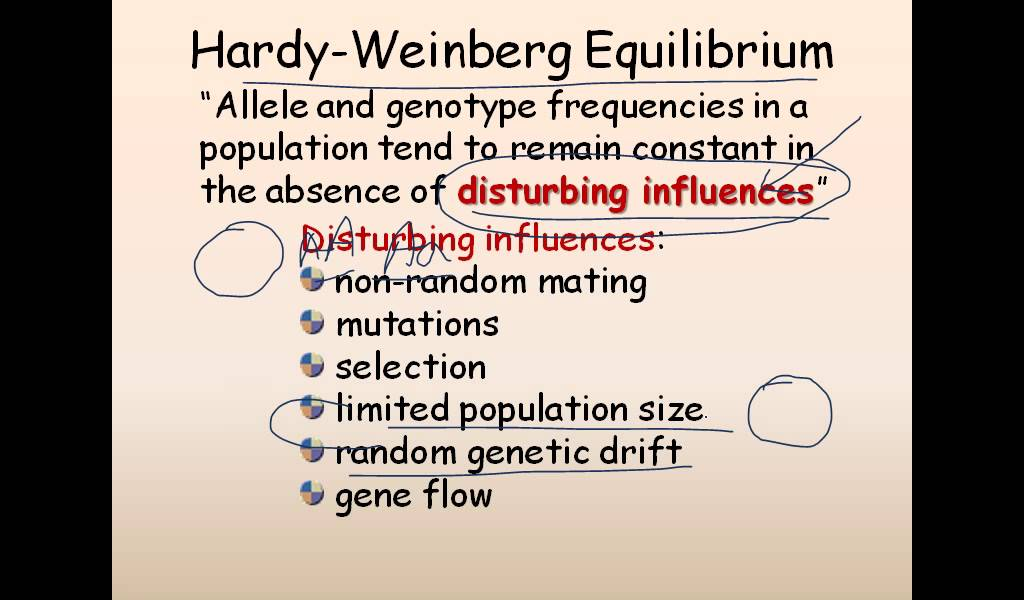example of a genetic drift