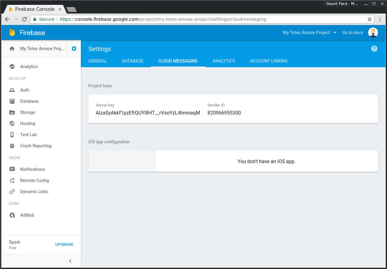firebase web push notification example