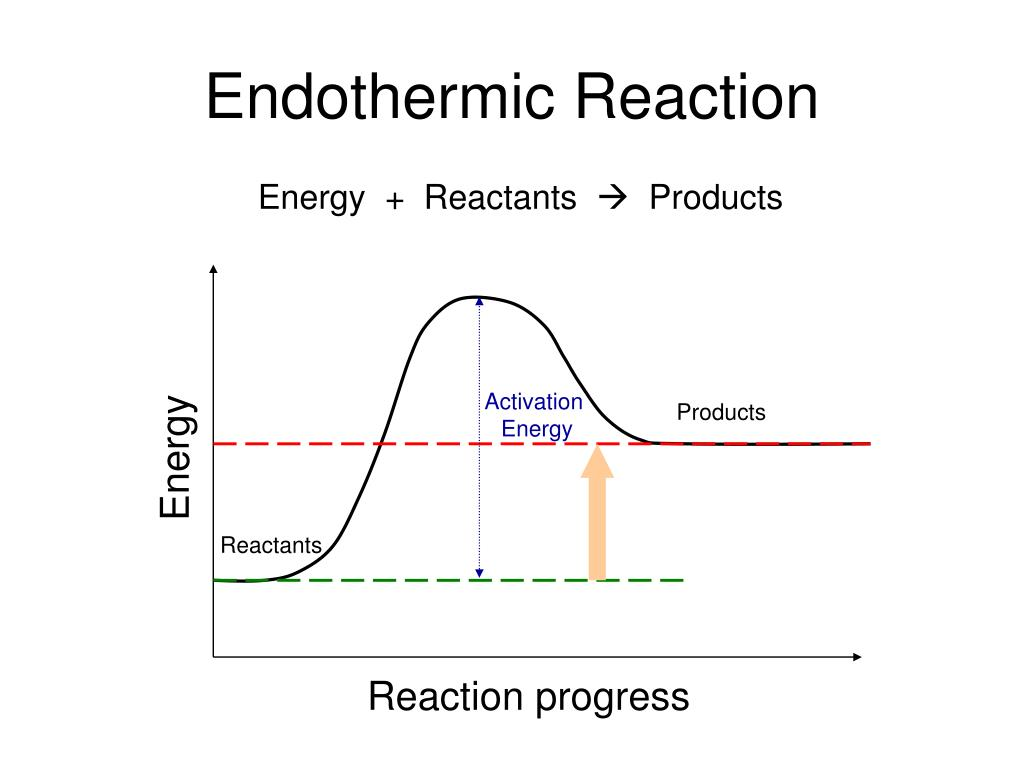 what is exothermic reaction give example