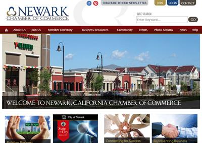 the chamber of commerce is an example of a