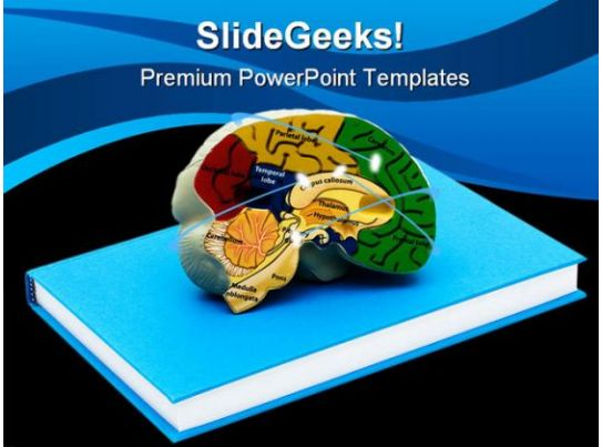 example of book of life powerpoint presentation