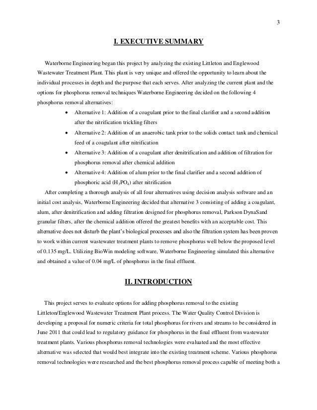 executive summary example engineering project