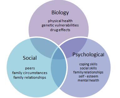 mental health biopsychosocial assessment example