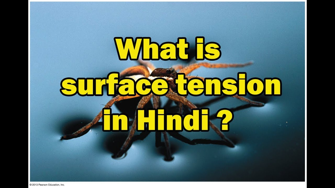 surface tension definition and example